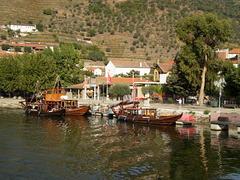 Rabelos moored at Pinhão.