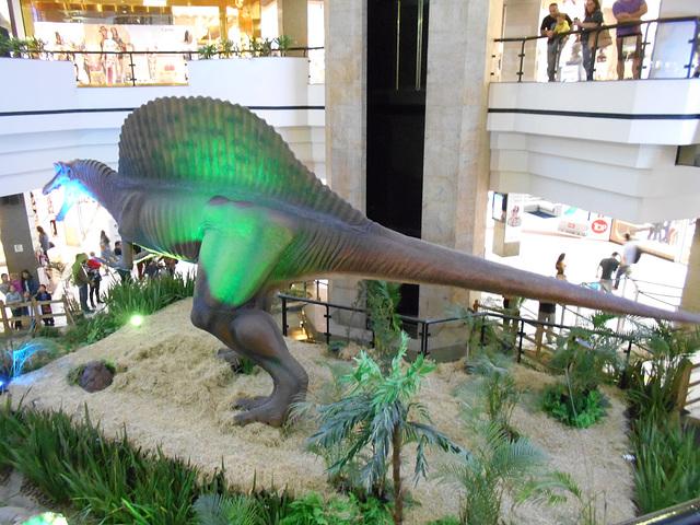DSCN2700 - Spinosaurus aegyptiacus, Theropoda