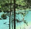 Un petit coin de paradis ! My Eden !!!