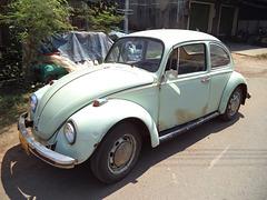 Coccinelle laotienne / Laotian volks beetle
