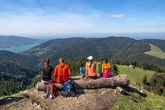 Four enjoy the view