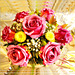 Happy Birthday to you... ©UdoSm