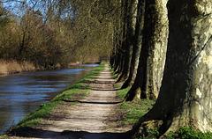 Promenade bol d'air le long du canal d'Orléans  .