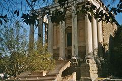 IT - Rome - Temple of Antoninus Pius and Faustina