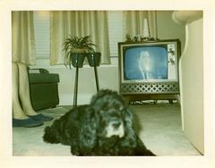 Bo and Ernie, December 29, 1967
