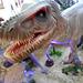 DSCN2702 - Tyrannosaurus rex, Theropoda