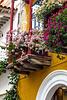 balcones y bouganvillias copia