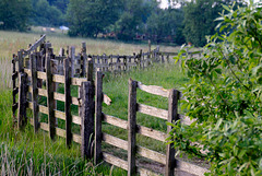 A late Fence for Friday