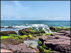 Warm-Water Tidal Pools