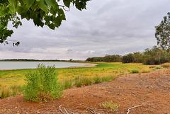 P1260998- Lac Pamamaroo -  Menindee Lakes.  05 mars 2020