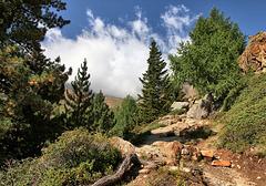 Wanderweg zur Höchsterhütte