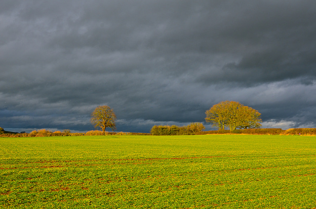 Storm clouds gathering near Gnosall; Christmas Day 2017