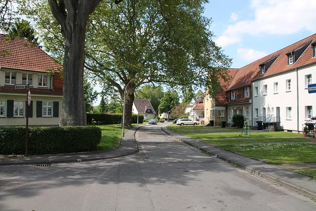 Schreberstraße (Siedlung Teutoburgia, Herne-Börnig) / 25.05.2019