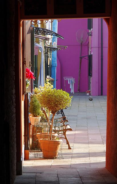 Calle dei Saladi