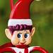 Wee Elf Closeup