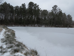 Ice on the pond
