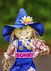 Bonny the Scarecrow Closeup