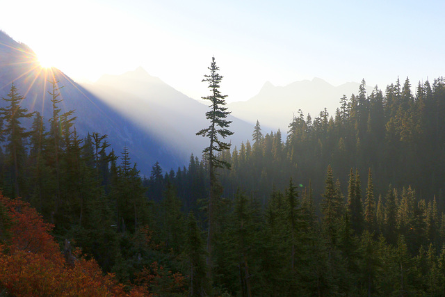 Morning on the Heather Pass Trail