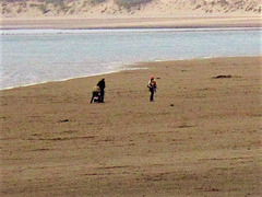 Just the odd person with their dog on Instow beach
