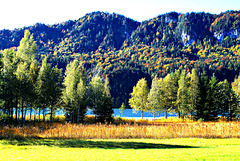 Autumn colours at Lake Weissensee. ©UdoSm