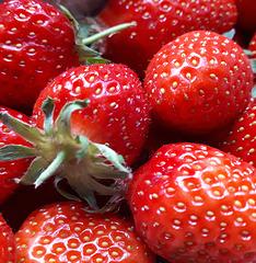 Riecht ihr den Duft der reifen und sonnenwarmen Erdbeeren?