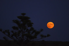 Monte Gordo, Full moon rising