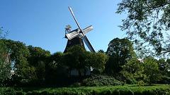 Video: Windmühle Johanna