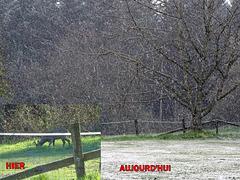 L'hiver n'a pas dit son dernier mot! Winter hasn't said its last word! [ON EXPLORE]