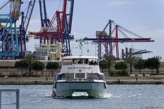 im Hafen von Valencia (© Buelipix)