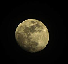Madame La lune s'invite ce soir,