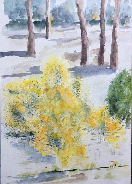 Aquarelle: En Provence le printemps