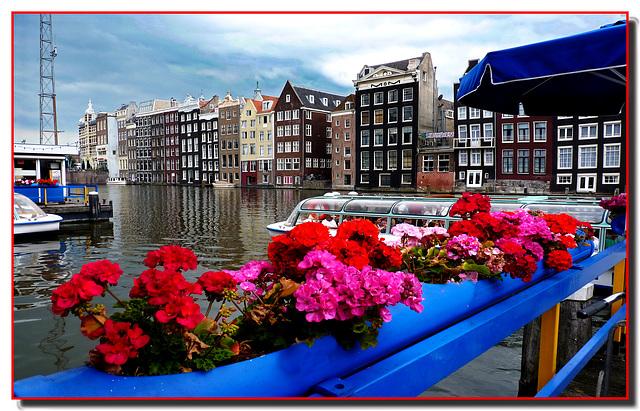 Amsterdam (296)