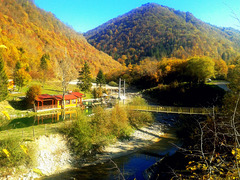 Autumn in the river valley