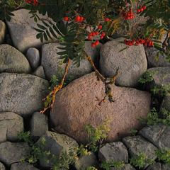 The Sunday Challenge: Stones
