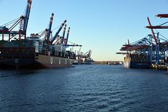 Im Waltershofer Hafen
