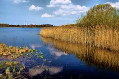 Naturschutzgebiet Dreifelder Weiher