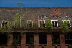 Dach eines alten Industriegebäudes (Conti ?)