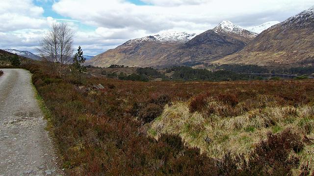 Walking in Glen Affric, Highland, Scotland