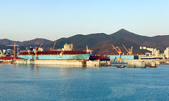 DSME returning to work after Lunar New Year holiday