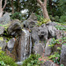 Tokyo, Small Waterfall in the Garden of the Imperial Palace