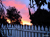 Evening Over the Fence.