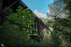 Unexpected Surprises! The Goldstream Provincial Park Train Trestle...And HFF too!!