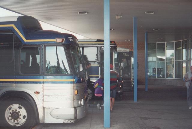 Acadian Lines coaches at Antigonish - 7 Sep 1992 (174-02)