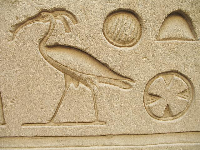9 Chasseur d'images Egyptien