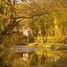 Halcion Days - Canal