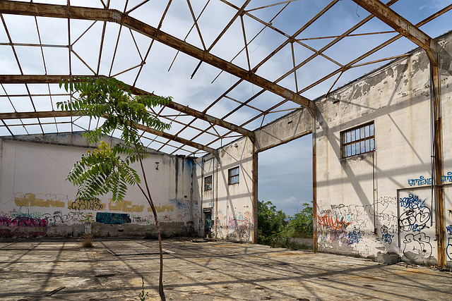 Abandoned Trieste - open space