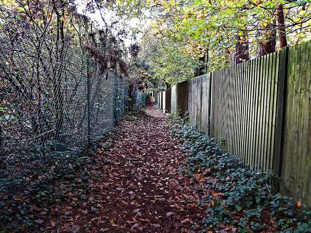 HFF for a tunnel like walk along a public footpath