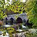 River Stour ~ Blandford Forum