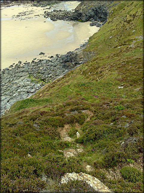 Greenbank Cove. The path to the beach.
