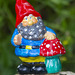 Wee Gnome with a Toadstool